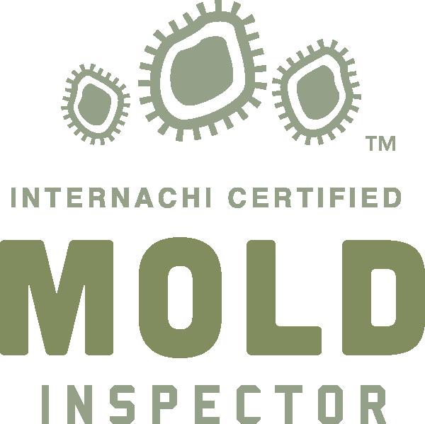 Plano mold inspection near me